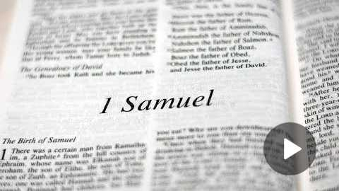 1 Samuel 30 Daily Bible Reading with Paul Nison