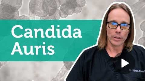 What Is Candida Auris?
