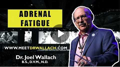 ADRENAL FATIGUE - DR. JOEL WALLACH